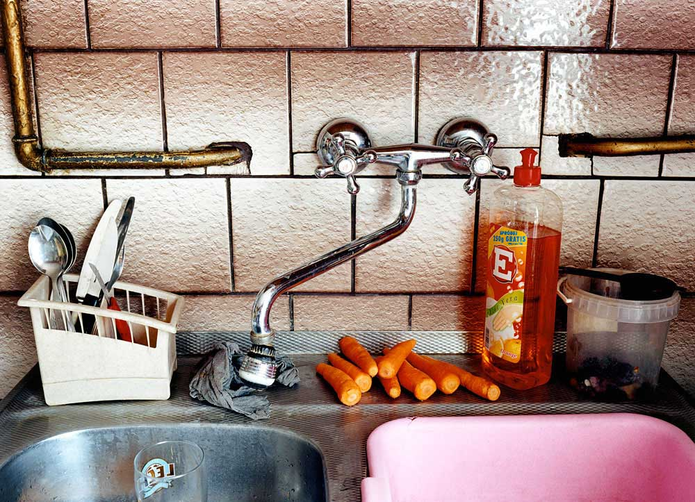 Carrots by the Sink 2004